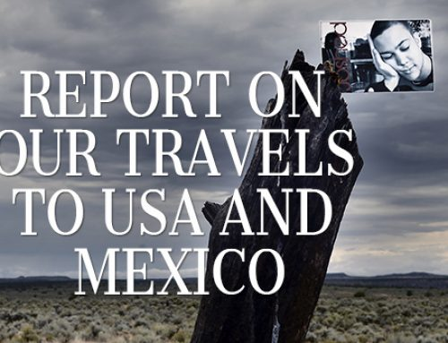 Report on our Travels to the USA and Mexico now available